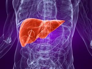 Photo-Liver-Disease1