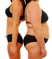 women belly fat